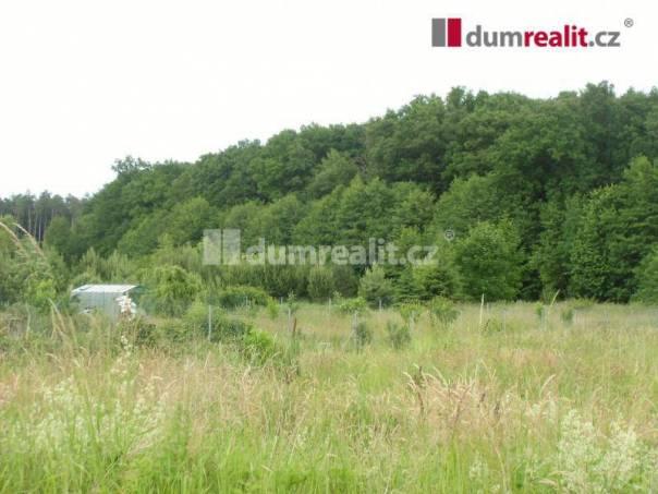 Prodej pozemku, Jizbice, foto 1 Reality, Pozemky | spěcháto.cz - bazar, inzerce