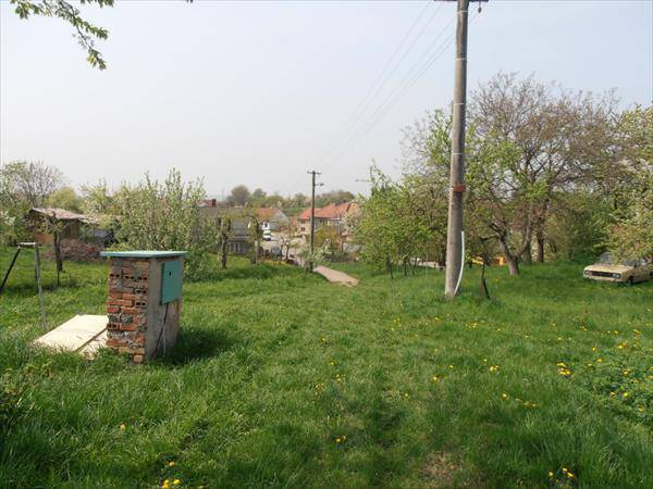 Prodej pozemku, Lutopecny, foto 1 Reality, Pozemky   spěcháto.cz - bazar, inzerce