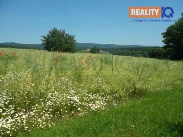 Prodej pozemku, Mrsklesy, foto 1 Reality, Pozemky | spěcháto.cz - bazar, inzerce