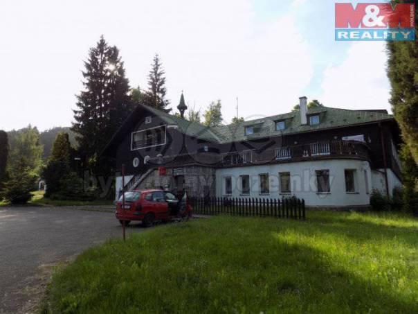 Prodej nebytového prostoru, Borušov, foto 1 Reality, Nebytový prostor | spěcháto.cz - bazar, inzerce