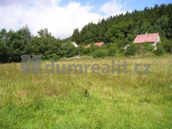 Prodej pozemku, Jedlová, foto 1 Reality, Pozemky | spěcháto.cz - bazar, inzerce