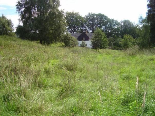 Prodej pozemku, Nový Kostel, foto 1 Reality, Pozemky | spěcháto.cz - bazar, inzerce