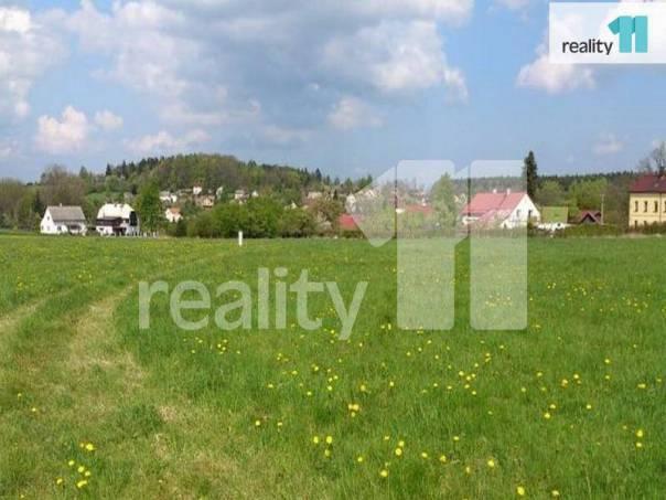 Prodej pozemku, Nový Oldřichov, foto 1 Reality, Pozemky | spěcháto.cz - bazar, inzerce
