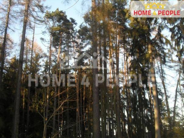 Prodej pozemku, Křešín, foto 1 Reality, Pozemky | spěcháto.cz - bazar, inzerce