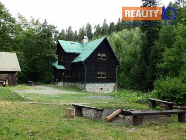 Prodej nebytového prostoru, Nýdek, foto 1 Reality, Nebytový prostor | spěcháto.cz - bazar, inzerce