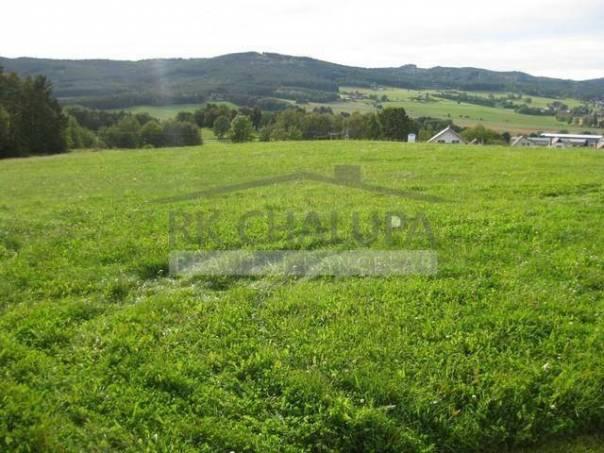 Prodej pozemku Ostatní, Lipí, foto 1 Reality, Pozemky | spěcháto.cz - bazar, inzerce