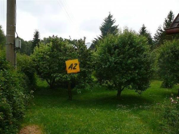 Prodej domu 3+1, Česká kamenice, foto 1 Reality, Domy na prodej | spěcháto.cz - bazar, inzerce