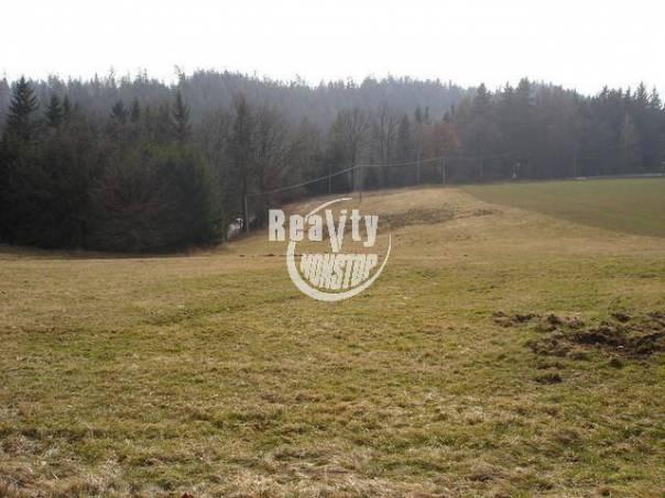 Prodej pozemku, Sedlice, foto 1 Reality, Pozemky | spěcháto.cz - bazar, inzerce