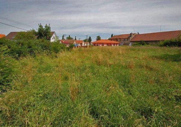 Prodej pozemku, Jeneč - Jeneč, foto 1 Reality, Pozemky | spěcháto.cz - bazar, inzerce