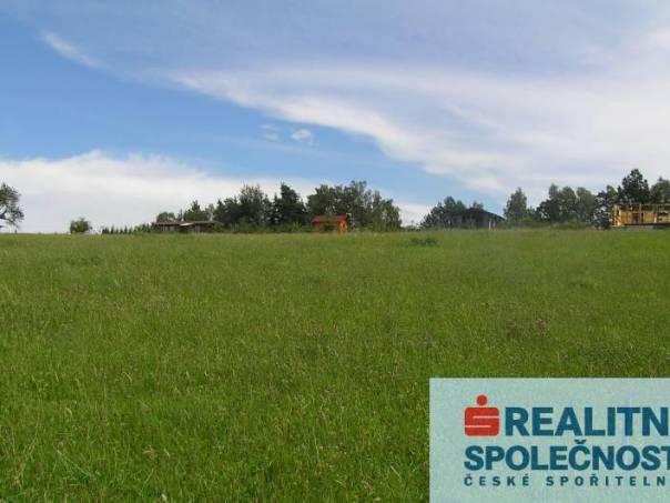 Prodej pozemku, Jivno, foto 1 Reality, Pozemky | spěcháto.cz - bazar, inzerce