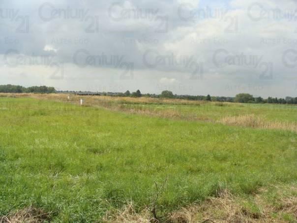 Prodej pozemku, Zlatá, foto 1 Reality, Pozemky | spěcháto.cz - bazar, inzerce