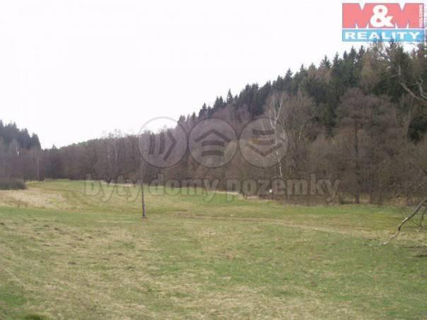 Prodej pozemku, Olešnice v Orlických horách, foto 1 Reality, Pozemky | spěcháto.cz - bazar, inzerce
