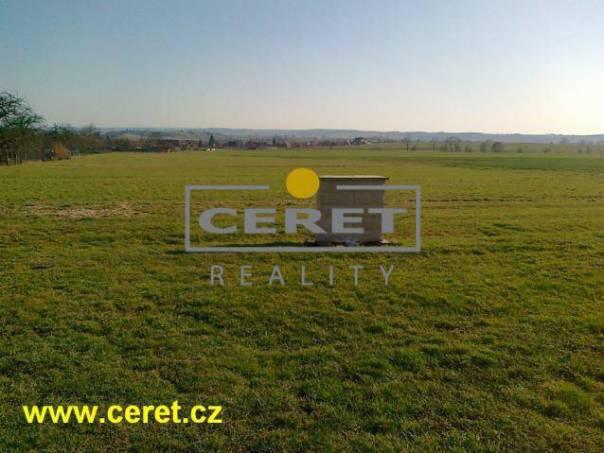 Prodej pozemku, Sruby, foto 1 Reality, Pozemky | spěcháto.cz - bazar, inzerce