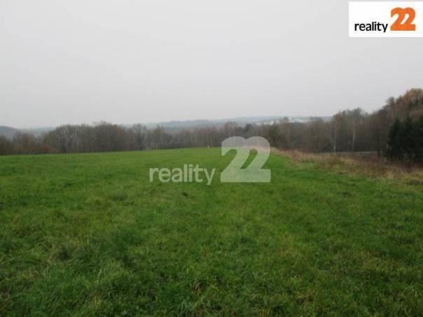 Prodej pozemku, Soutice, foto 1 Reality, Pozemky | spěcháto.cz - bazar, inzerce