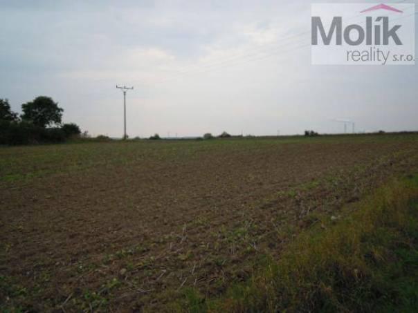 Prodej pozemku, Břvany, foto 1 Reality, Pozemky | spěcháto.cz - bazar, inzerce