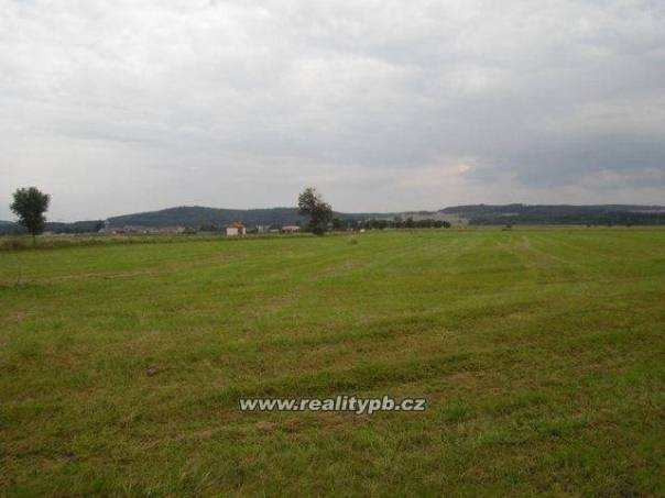 Prodej pozemku Ostatní, Svaté Pole - Budínek, foto 1 Reality, Pozemky | spěcháto.cz - bazar, inzerce