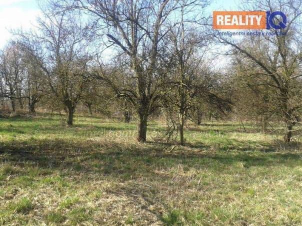 Prodej pozemku, Orlová - Město, foto 1 Reality, Pozemky | spěcháto.cz - bazar, inzerce