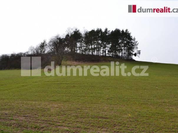 Prodej pozemku, Trhové Dušníky, foto 1 Reality, Pozemky | spěcháto.cz - bazar, inzerce