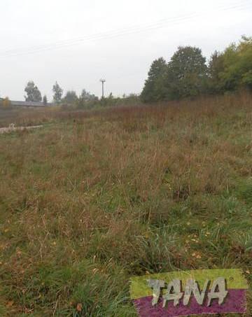 Prodej pozemku, Libchavy - Dolní Libchavy, foto 1 Reality, Pozemky | spěcháto.cz - bazar, inzerce