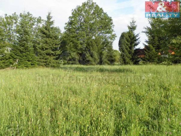 Prodej pozemku, Sendraž, foto 1 Reality, Pozemky | spěcháto.cz - bazar, inzerce