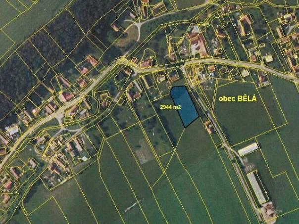 Prodej pozemku, Luže - Bělá, foto 1 Reality, Pozemky | spěcháto.cz - bazar, inzerce