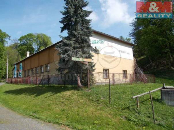 Prodej nebytového prostoru, Budišov nad Budišovkou, foto 1 Reality, Nebytový prostor | spěcháto.cz - bazar, inzerce