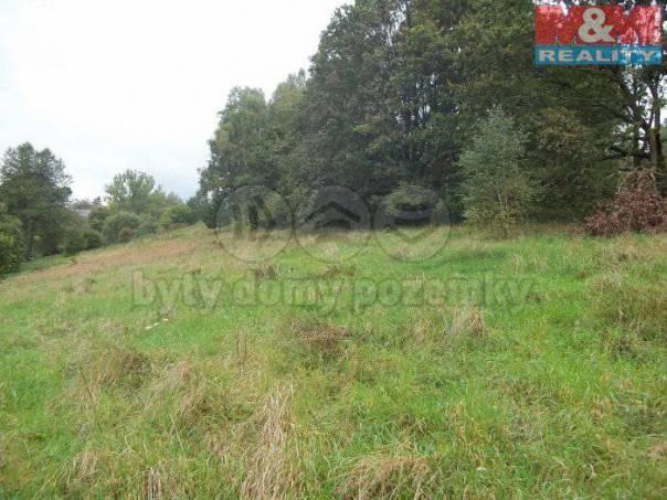 Prodej pozemku, Sázava, foto 1 Reality, Pozemky | spěcháto.cz - bazar, inzerce