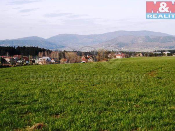 Prodej pozemku, Milíkov, foto 1 Reality, Pozemky | spěcháto.cz - bazar, inzerce