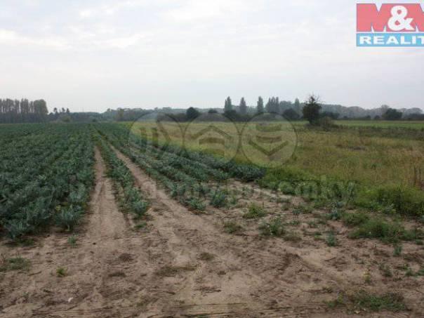 Prodej pozemku, Křenek, foto 1 Reality, Pozemky | spěcháto.cz - bazar, inzerce