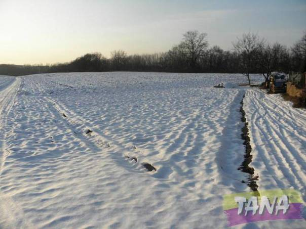 Prodej pozemku, Rychnovek, foto 1 Reality, Pozemky | spěcháto.cz - bazar, inzerce