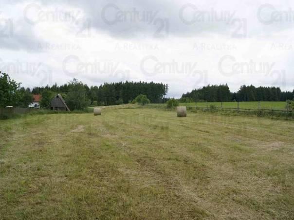 Prodej pozemku, Drahlín, foto 1 Reality, Pozemky | spěcháto.cz - bazar, inzerce