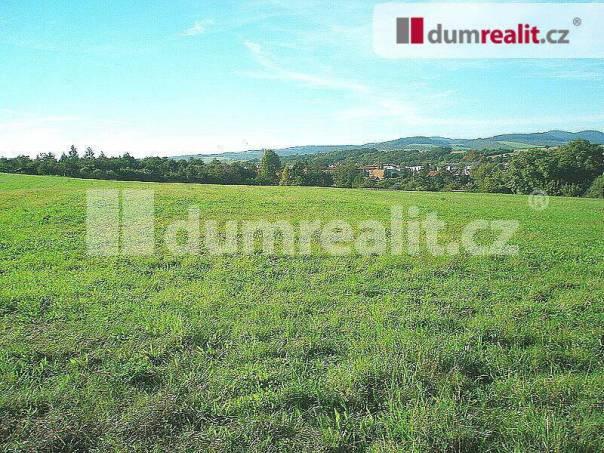 Prodej pozemku, Lubenec, foto 1 Reality, Pozemky | spěcháto.cz - bazar, inzerce
