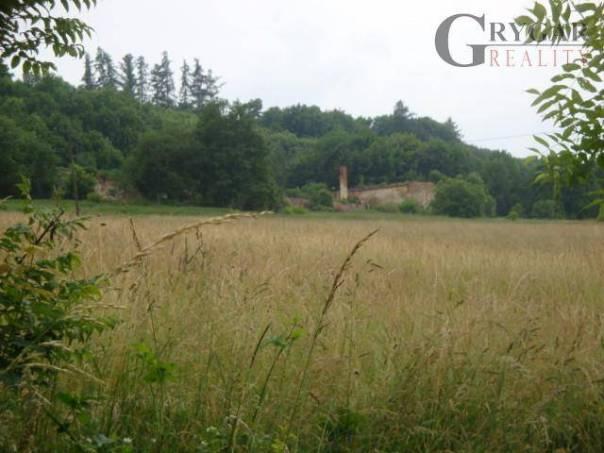 Prodej pozemku, Chudenice - Lučice, foto 1 Reality, Pozemky | spěcháto.cz - bazar, inzerce
