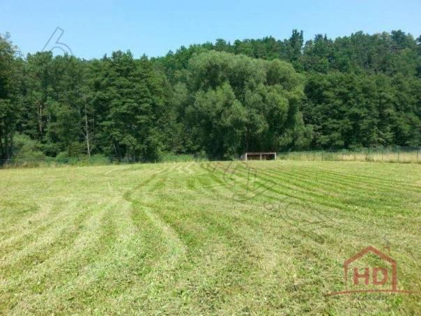 Prodej pozemku, Kamenný Újezd - Březí, foto 1 Reality, Pozemky | spěcháto.cz - bazar, inzerce