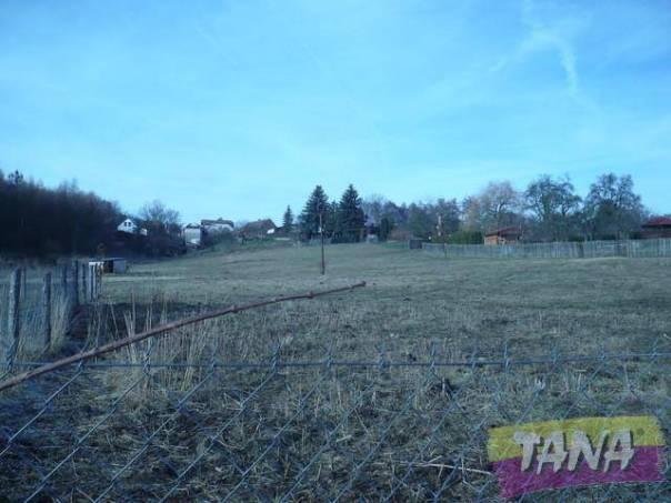 Prodej pozemku, Seletice, foto 1 Reality, Pozemky | spěcháto.cz - bazar, inzerce