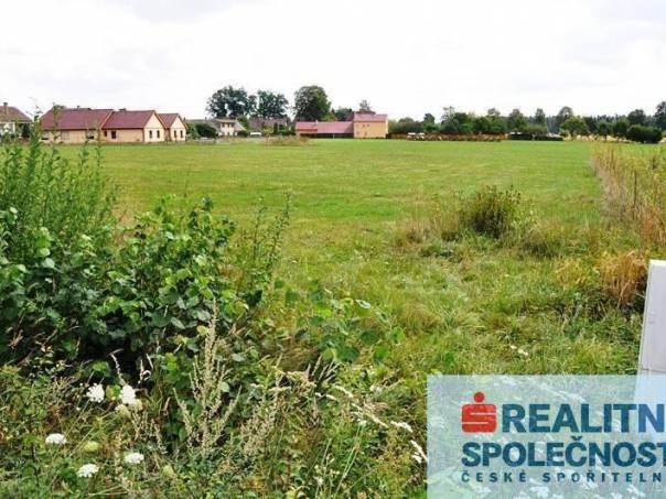 Prodej pozemku, Novosedly nad Nežárkou - Mláka, foto 1 Reality, Pozemky | spěcháto.cz - bazar, inzerce