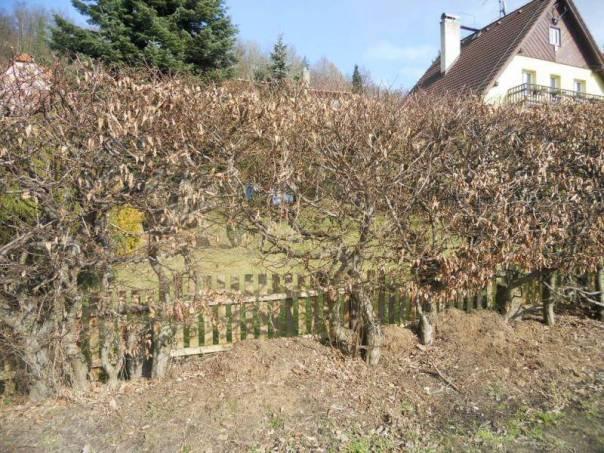 Prodej domu Atypický, Liberec - Liberec XV-Starý Harcov, foto 1 Reality, Domy na prodej | spěcháto.cz - bazar, inzerce