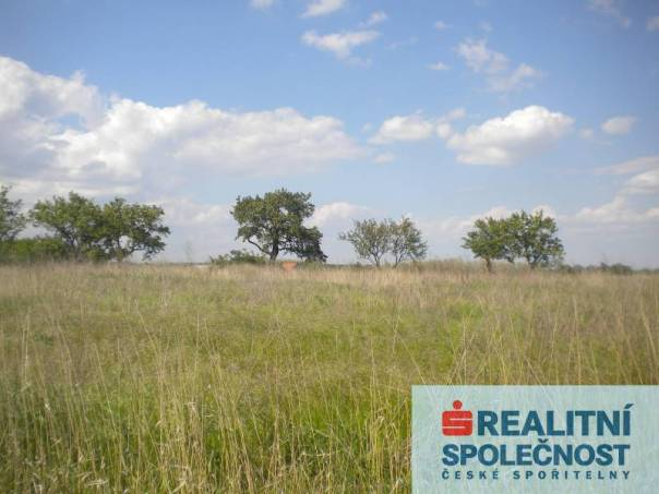 Prodej pozemku, Syrovice, foto 1 Reality, Pozemky | spěcháto.cz - bazar, inzerce