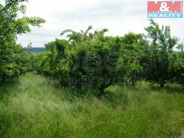 Prodej pozemku, Malovice, foto 1 Reality, Pozemky | spěcháto.cz - bazar, inzerce