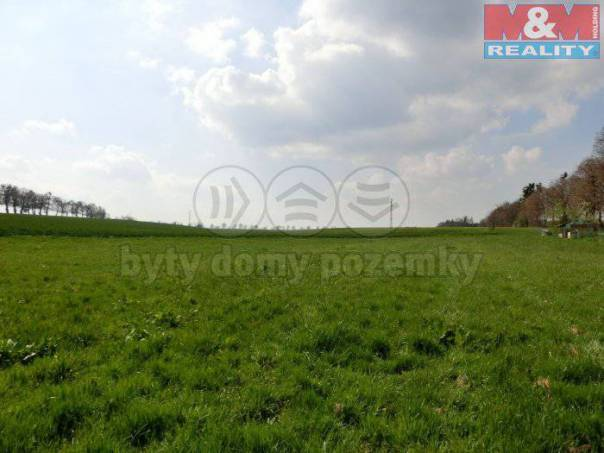 Prodej pozemku, Štěpánkovice, foto 1 Reality, Pozemky | spěcháto.cz - bazar, inzerce