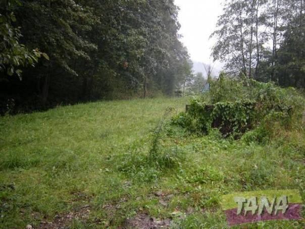 Prodej pozemku, Benecko - Dolní Štěpanice, foto 1 Reality, Pozemky | spěcháto.cz - bazar, inzerce