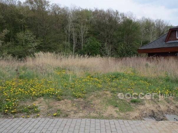 Prodej pozemku, Pětihosty, foto 1 Reality, Pozemky | spěcháto.cz - bazar, inzerce