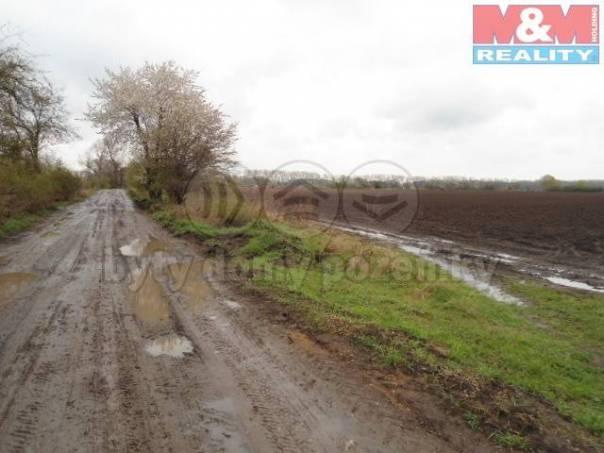 Prodej pozemku, Semice, foto 1 Reality, Pozemky | spěcháto.cz - bazar, inzerce