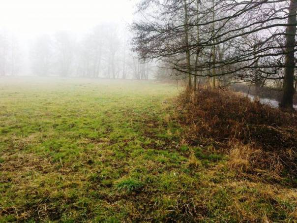 Prodej pozemku, Bouzov, foto 1 Reality, Pozemky | spěcháto.cz - bazar, inzerce