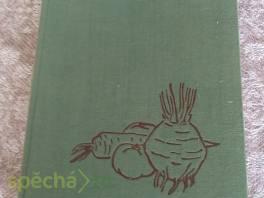 Zeleninová mísa - 370 receptů.... , Hobby, volný čas, Knihy  | spěcháto.cz - bazar, inzerce zdarma