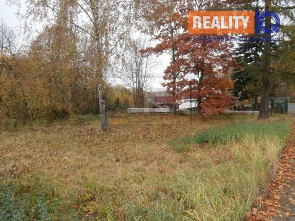 Prodej pozemku, Potštát, foto 1 Reality, Pozemky | spěcháto.cz - bazar, inzerce