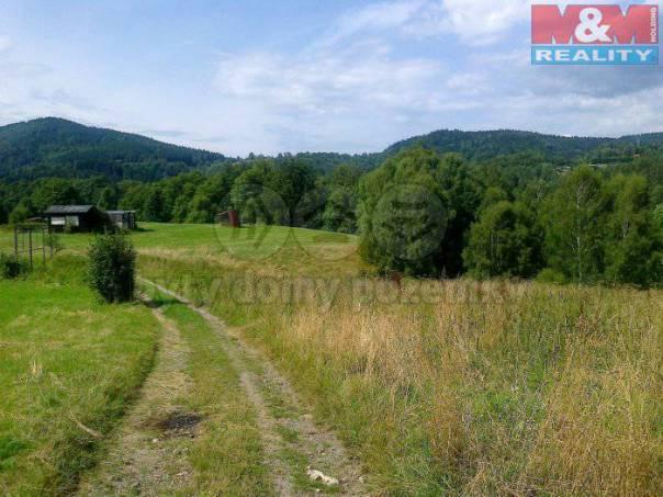 Prodej pozemku, Desná, foto 1 Reality, Pozemky   spěcháto.cz - bazar, inzerce