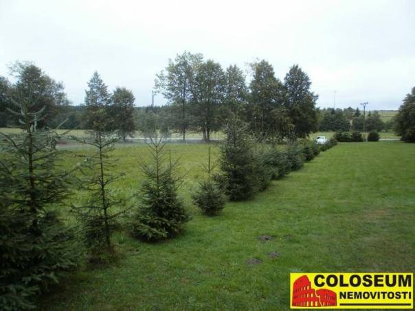 Prodej pozemku, Suchý, foto 1 Reality, Pozemky | spěcháto.cz - bazar, inzerce