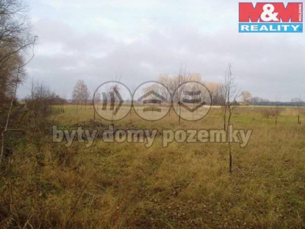 Prodej pozemku, Olešnice, foto 1 Reality, Pozemky | spěcháto.cz - bazar, inzerce