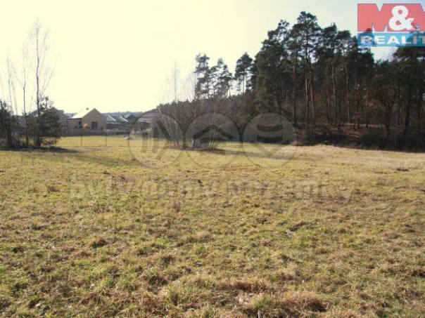 Prodej pozemku, Skorkov, foto 1 Reality, Pozemky | spěcháto.cz - bazar, inzerce